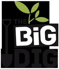 BigDigLogo_large
